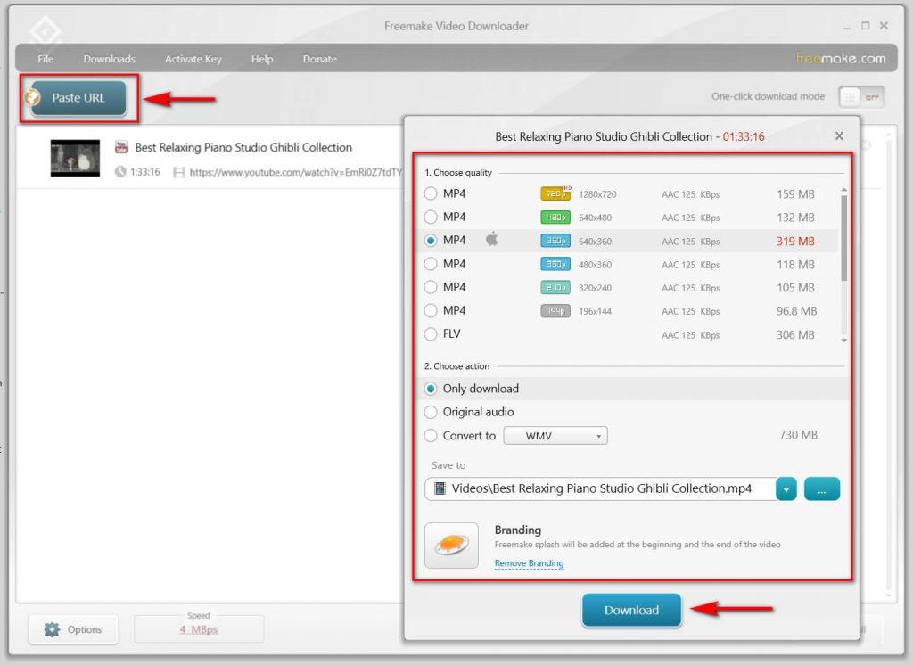 Freemake video downloader download interface