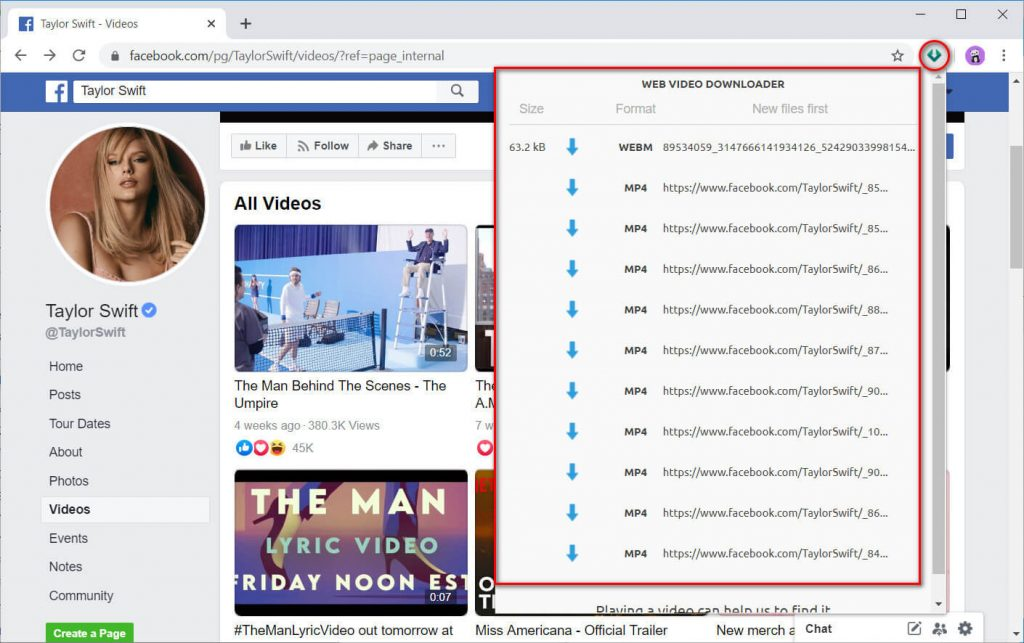 Web Video Downloader working interface