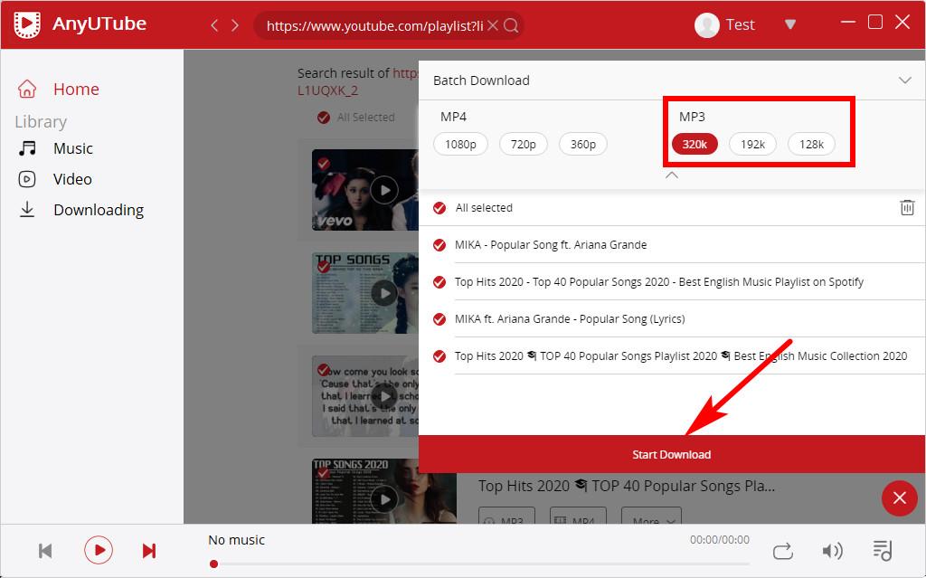 AnyUTube YouTube playlist formats selection