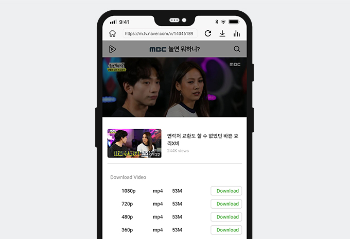 Download Naver video with AnyVid