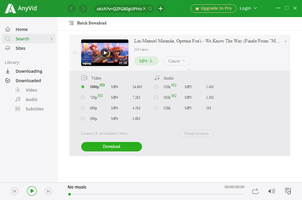 Download video with desired format