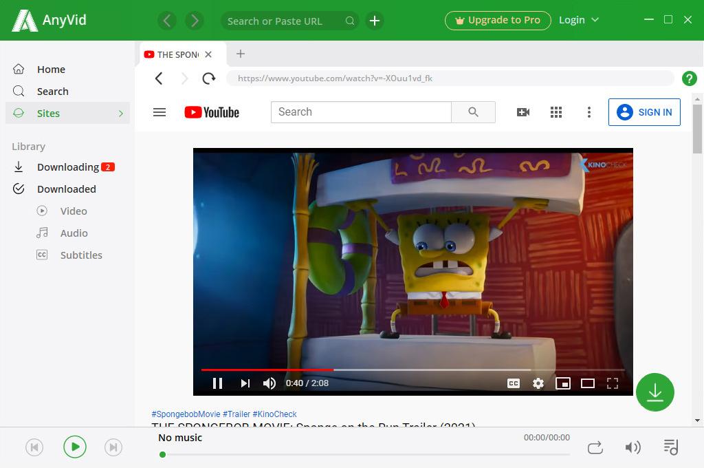 Spielen Sie YouTube-Videos auf AnyVid ab