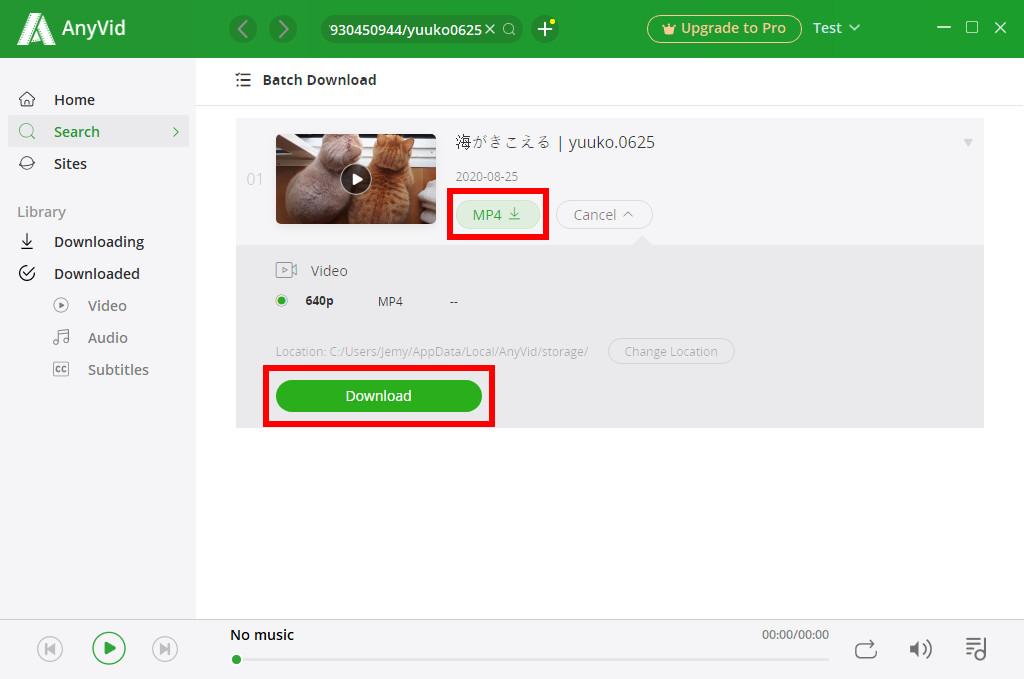 Klicken Sie auf die Schaltfläche Herunterladen, um das Tumblr-Video zu speichern