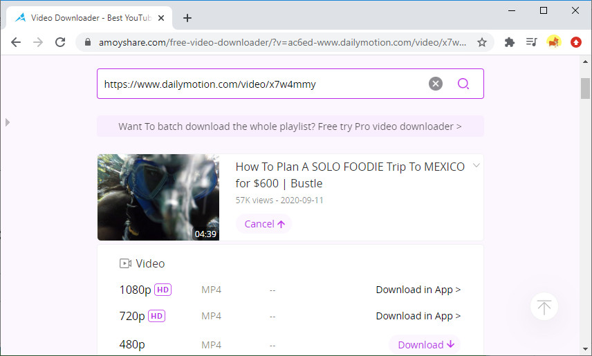 Download Dailymotion video online with Free Video Finder